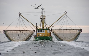 A trawler with empty nets