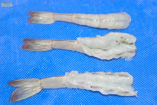 Prawns - before, during and after the butterflying process